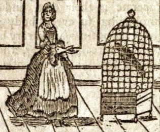 bird-cage-woman